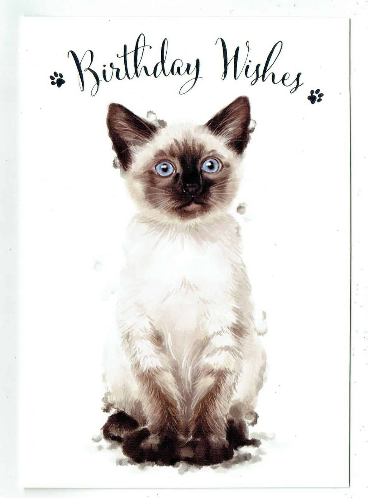 General Birthday Card With Cute Cat Design BIRTHDAY