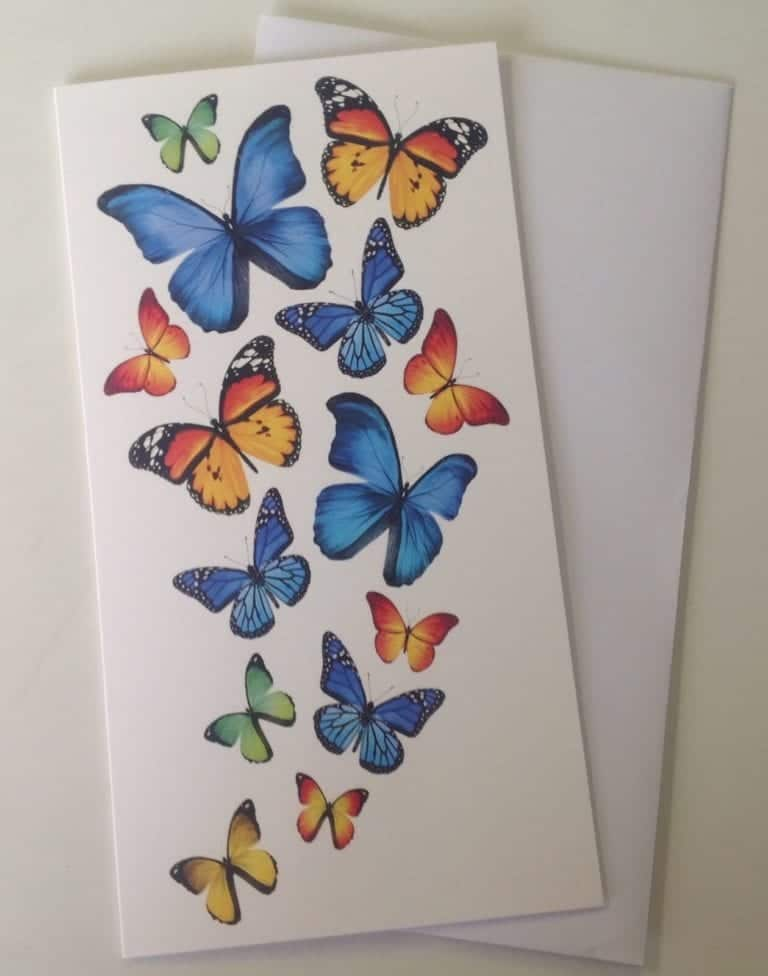 greeting card blank inside notelet card  butterfly